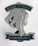 Navy, Air Force, Coast Guard Buddy Carry Pin